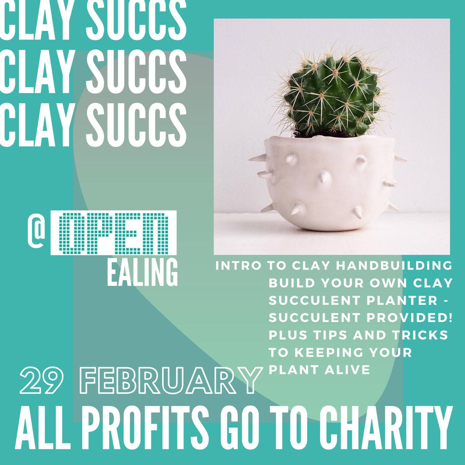 Build your own clay succulent planter