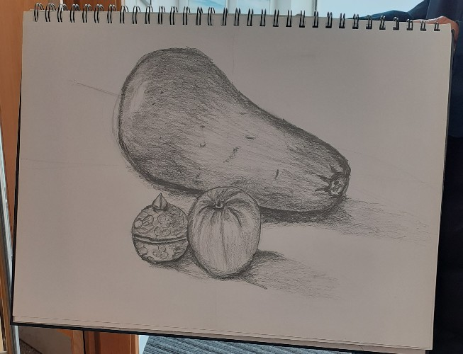 Drawing for Beginners Course with Sheila Moylan